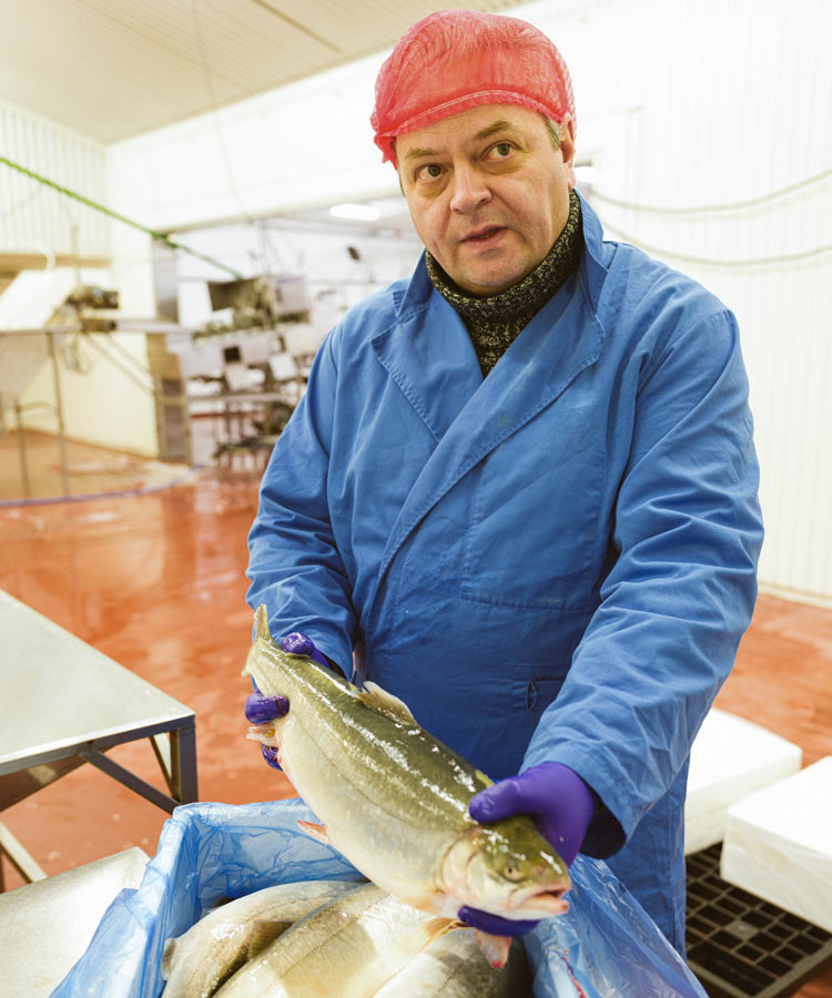 worker processing fish